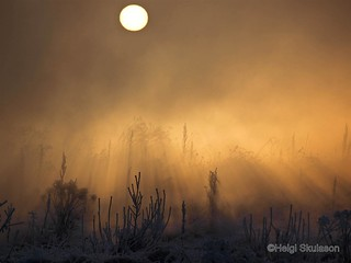 Sunrise in frostfog | by Helgi Skulason photographer