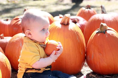 Great Pumpkin Charlie Brown Halloween Decorations