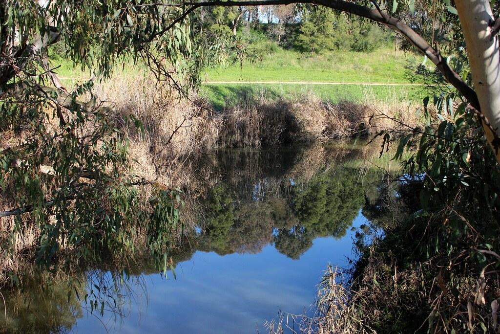 reflective pool merri creek at moomba park in fawkner. Black Bedroom Furniture Sets. Home Design Ideas