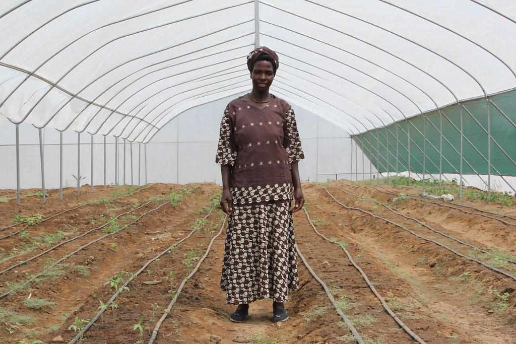 Unicef Uk Food Security