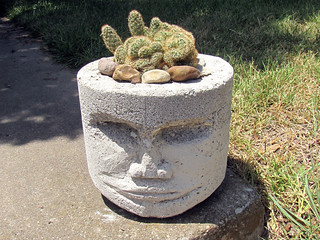 Pothead with brain cactus, 4 | by seanmichaelragan