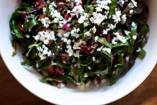 Swiss Chard Salad | by Gemma E. Petrie