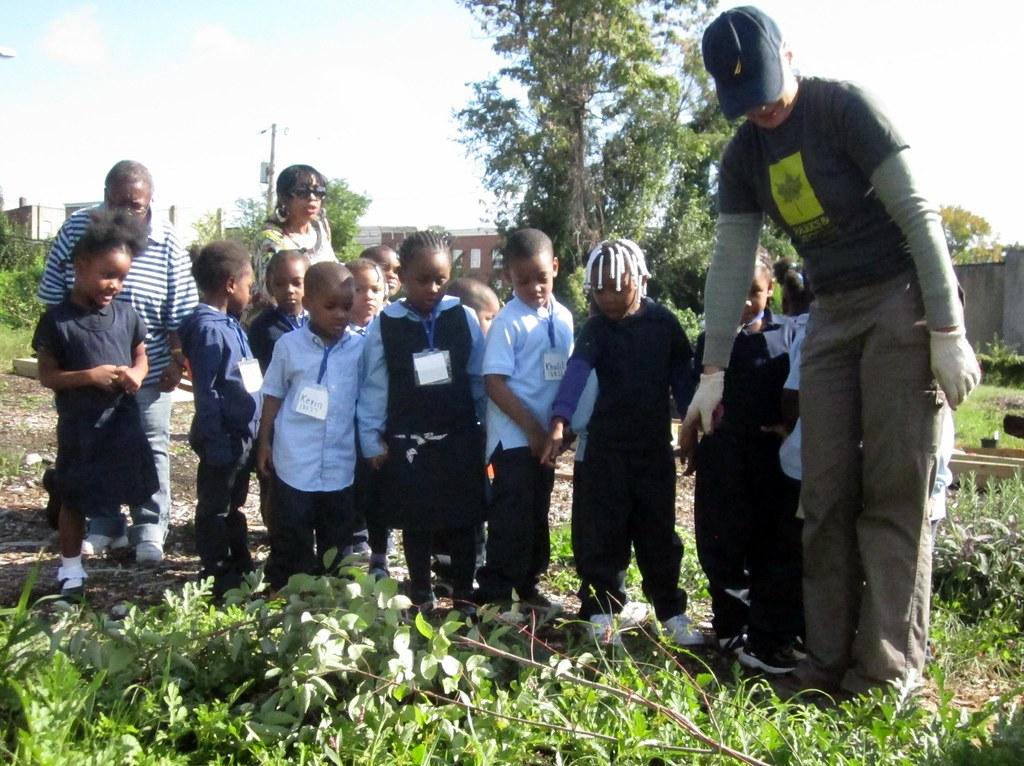 how to create a community school garden