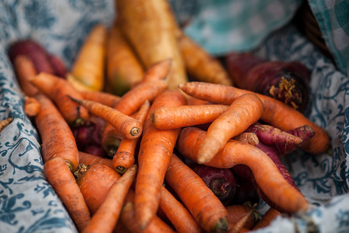 Carrots | by goingslowly