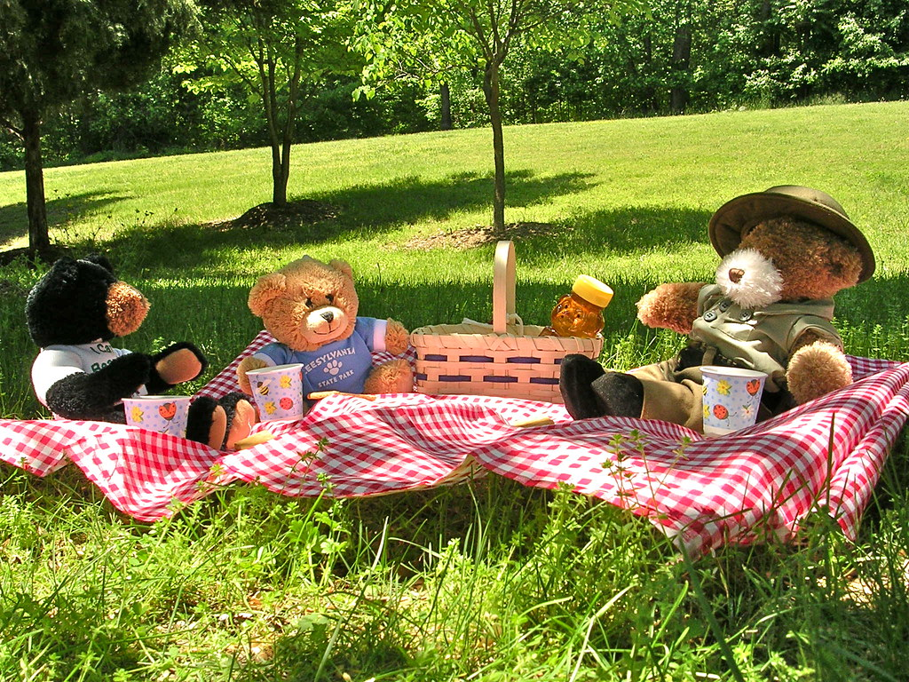 Teddy Bear Picnic Cake Ideas