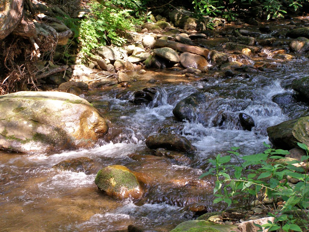 cool spot mountain stream on a hot day walker creek. Black Bedroom Furniture Sets. Home Design Ideas