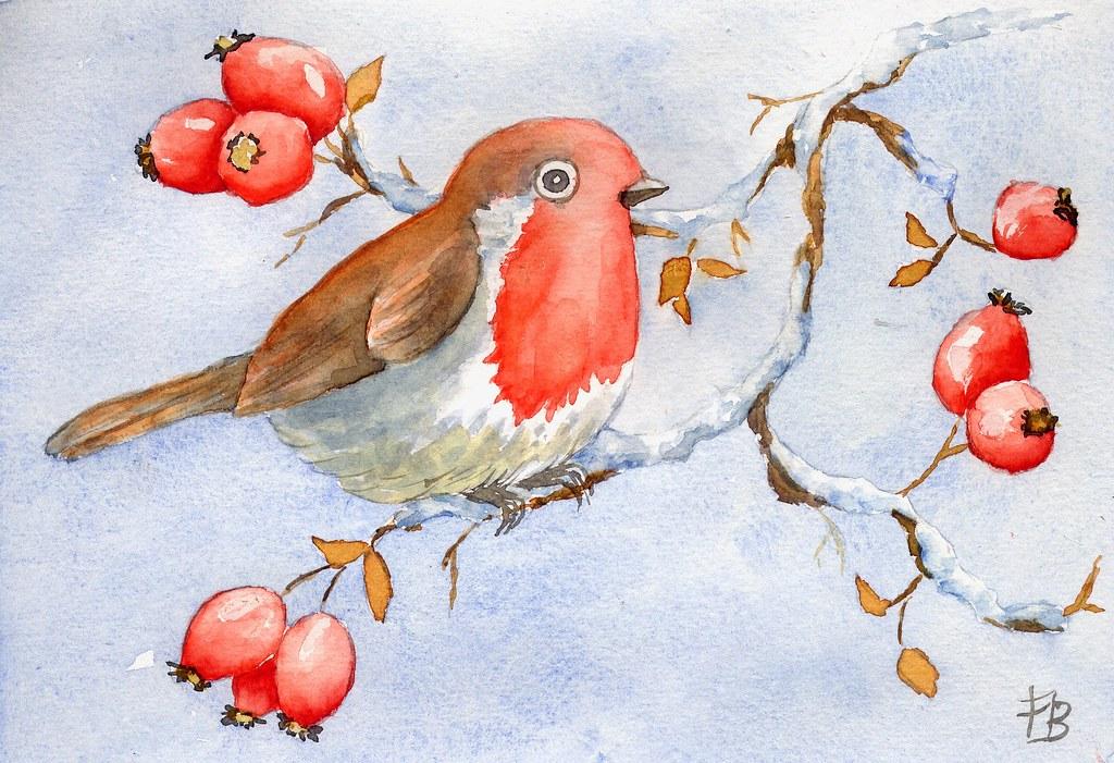 aquarelle mon petit oiseau mais calmement le rouge