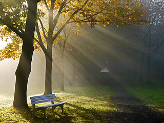 The lonesome bench | by RainerSchuetz