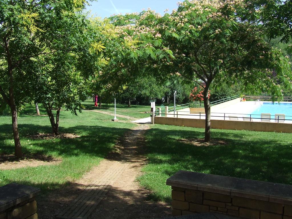 toujours autour de la piscine vari t d 39 arbre et d 39 arbuste flickr. Black Bedroom Furniture Sets. Home Design Ideas