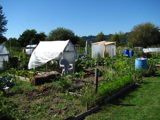 Colony Park Mobile Home Village Merritt Island Fl