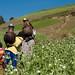 Carrying water, Kotoba, Ethiopia
