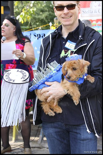 Dog Halloween Parade Long Island