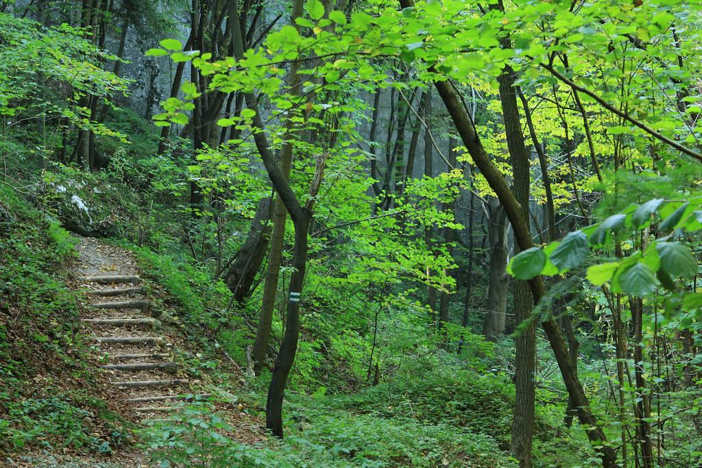 Ojcowski Park Narodowy / Ojców National Park, Poland