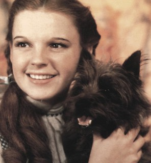 Dorothy & Toto (The Original) | by BudCat14/Ross
