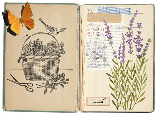 Lavender collage | by Geninne