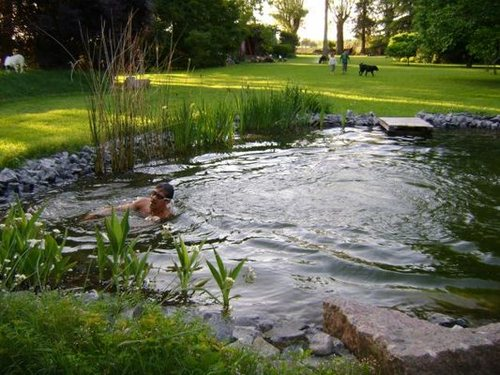 Piscinas biologicas biopool las piscinas naturales o for Piscinas biologicas