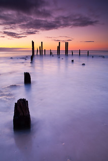 Stumped | by fotoscape2009