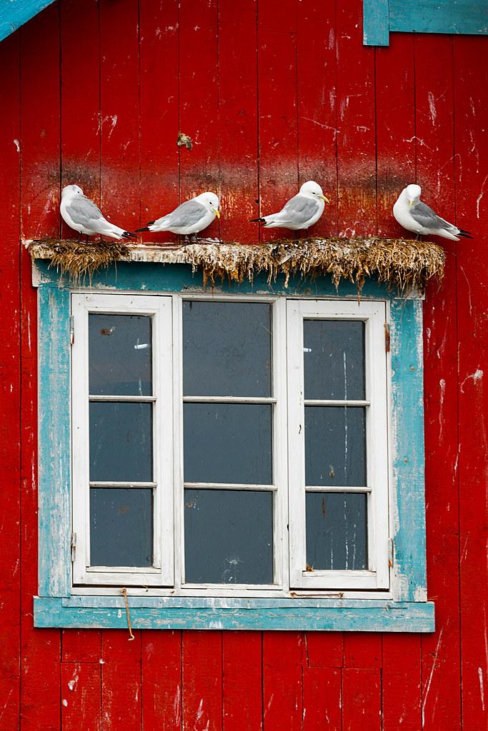 Overcrowded Windows