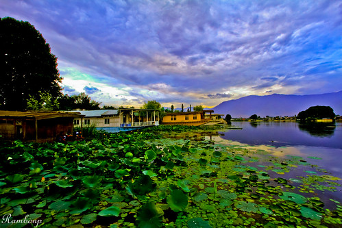 Nagin Lake.......................Srinagar. [Explore] | by Rambonp:loves all creatures of this universe.