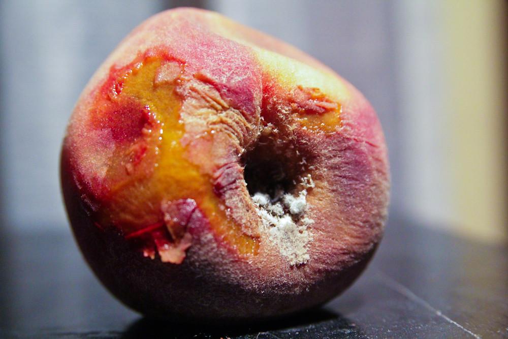 Kcet Org Food The Brown Derbys Grapefruit Cake Recipe