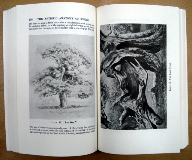 Book The Artistic Anatomy Of Trees By Rex Vicat Cole In Flickr