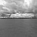 Elbe View 349