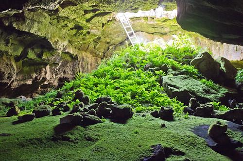 Lava Beds National Monument Fern Cave Tour