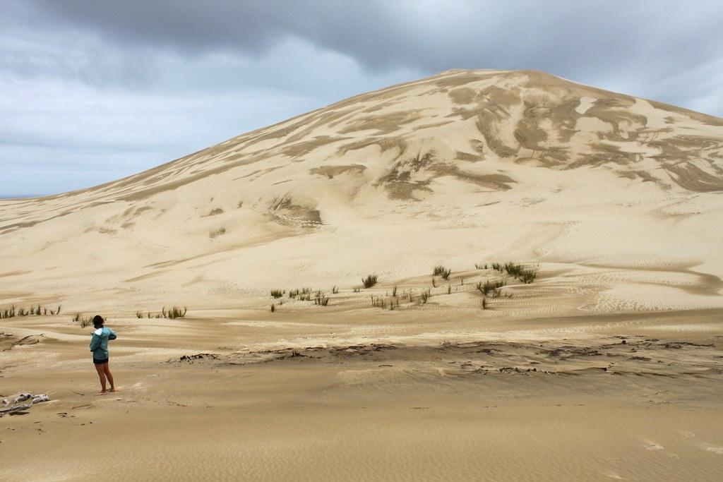 New Zealand: Te Paki Sand Dunes near Cape Reinga