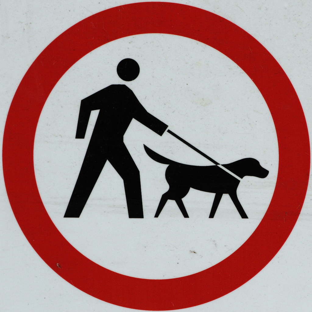Are Dogs Allowed In Millhouses Park