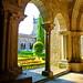 Tui, Galice, Espagne, Cathédrale, Catedral de Santa Maria de Tui 36, le cloître