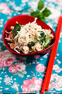 Simple Asian Chicken Salad with fried vermicelli | by anhsphoto_busy!!