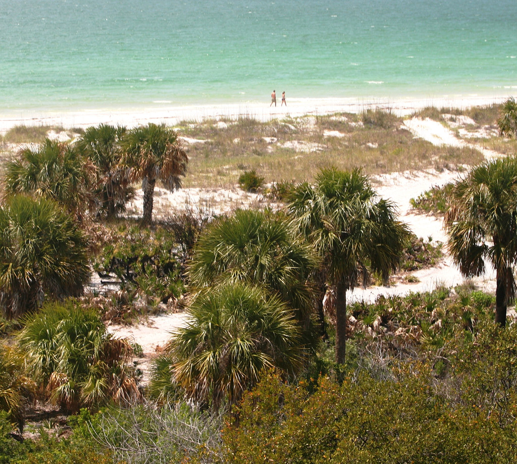 Caladesi Island Florida: As One Of The Few Completely