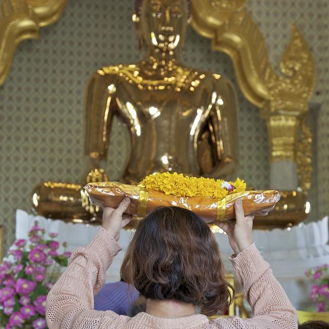 Recent Photos The Commons 20under20 Galleries World Map App Garden    Wat Traimit