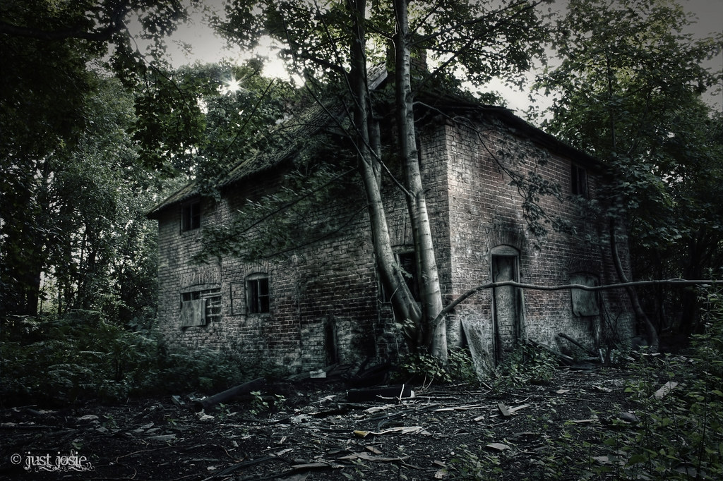 In the dark dark woods there was a dark dark house flickr - The house in the woods ...