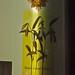au. Ken Leap -  AGG 2011 Auction Items (Kean)