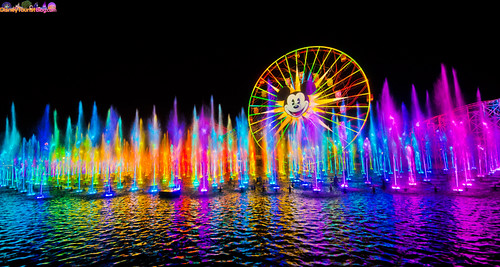 The Wonderful World Of Color World Of Color Went From