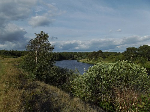 The River Aire at RSPB Fairburn Ings near Castleford in West Yorkshire, England - July 2011