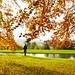 Autumn at Chatsworth