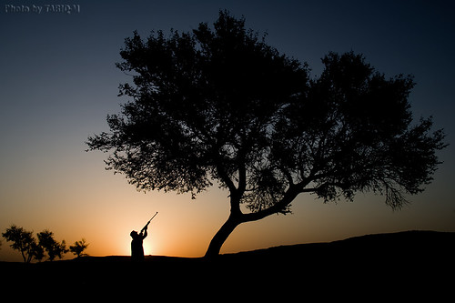 Silhouette The Hunter - My Friend Abdulaziz | by TARIQ-M