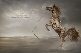 HORSE OF THE FANTASY | by suliman almawash