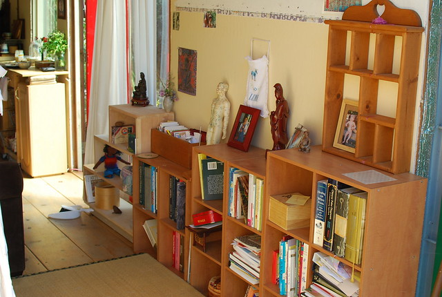 the small library, in front of the sofa