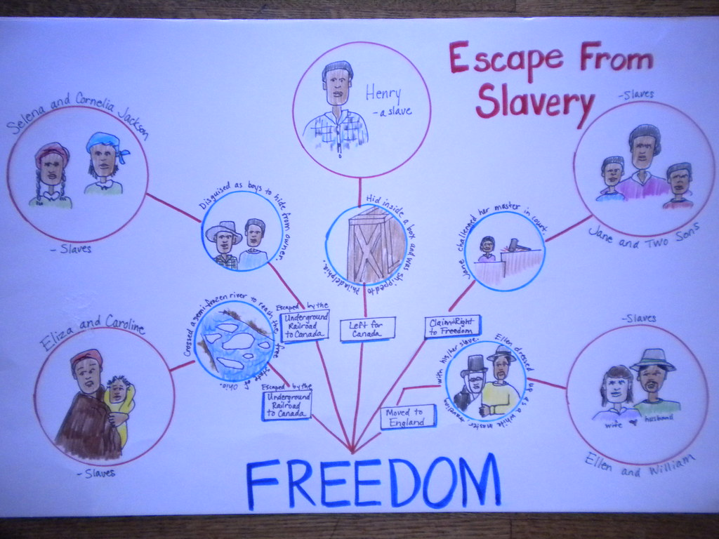 Flow Chart Graphic Organizer: Escape From Freedom | Graphic organizer made by @SwensonJuliu2026 | Flickr,Chart