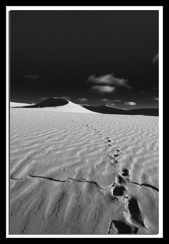 Walking on the Moon | by Trevi2009-