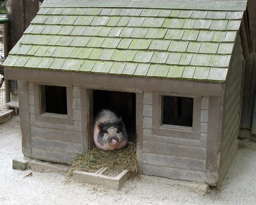 Plastic Dog Houses For Sale