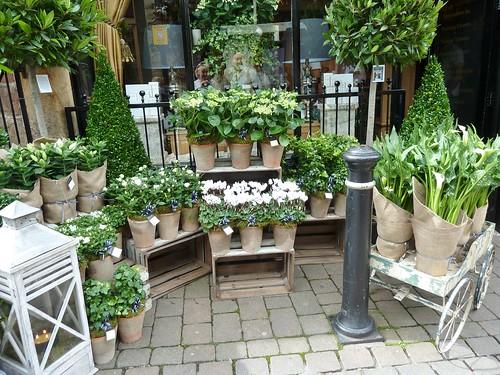Exhibition Stand Design Harrogate : Flower shop in harrogate only sells white flowers
