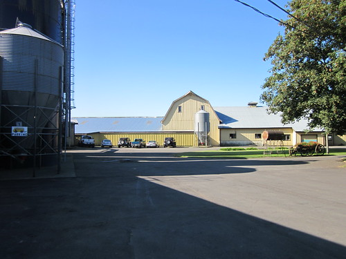 Dairy Farm Tours In Minnesota