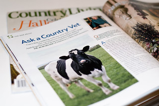 Published in Country Living October 2011 | by www.LKGPhoto.com