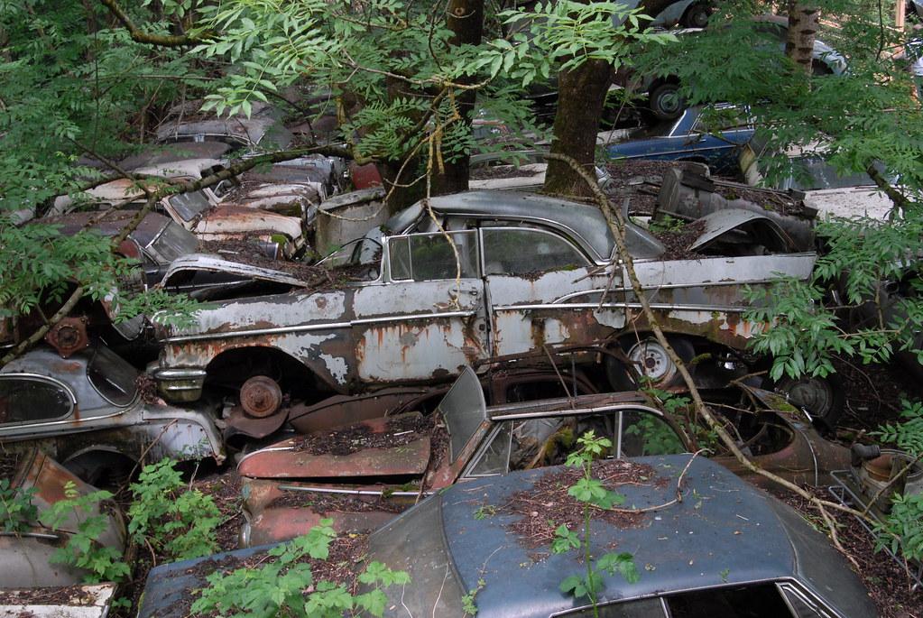 Car Graveyard Kaufdorf Autofriedhof Switzerland Luft