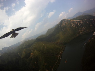 Falcon Attacks (KAP Rig) @ The China Great Wall | by d3an7an
