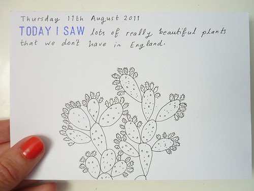 11th August | by Jill Wignall